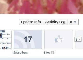 Facebook Activity Log Button