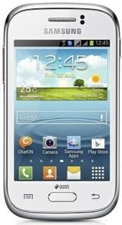 Samsung Galaxy Young Duos