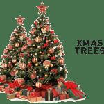 Konga Christmass Trees