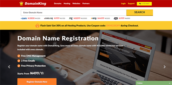 DomainKing NG Review: Premium Web Hosting at Affordable price