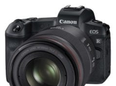 EOS R with 50mm RF Lens_1536496376