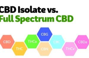 Full Spectrum CBD vs CBD Isolate