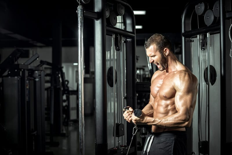 Cable Curls Multi Gym