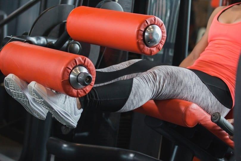 Leg Curl Multi Gym