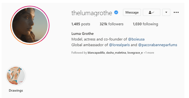 Instagram Profile showing Blue Tick